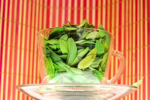 Green Tea tea leaves in a cup