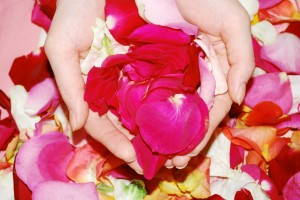 Sevani hands with roses