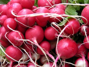ECOCERT preservative from radishes Leucidal in Sevani